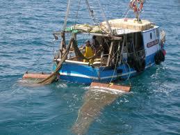 Marineria Sambenedettese contro la Legge 154/2016 perché non tiene conto della specificità della pesca adriatica