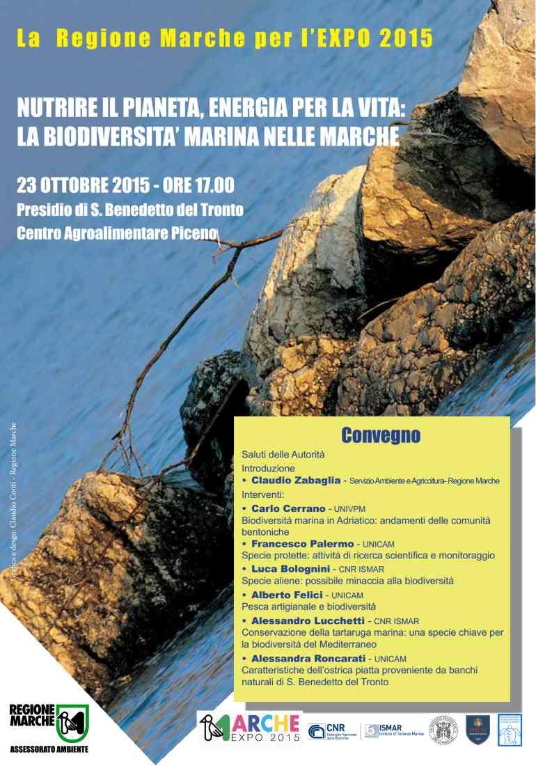 La Biodiversità Marina  nelle Marche