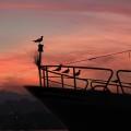 i colori del crepuscolo - ph Umberto Candiani