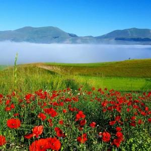Mare di nebbia a Castelluccio