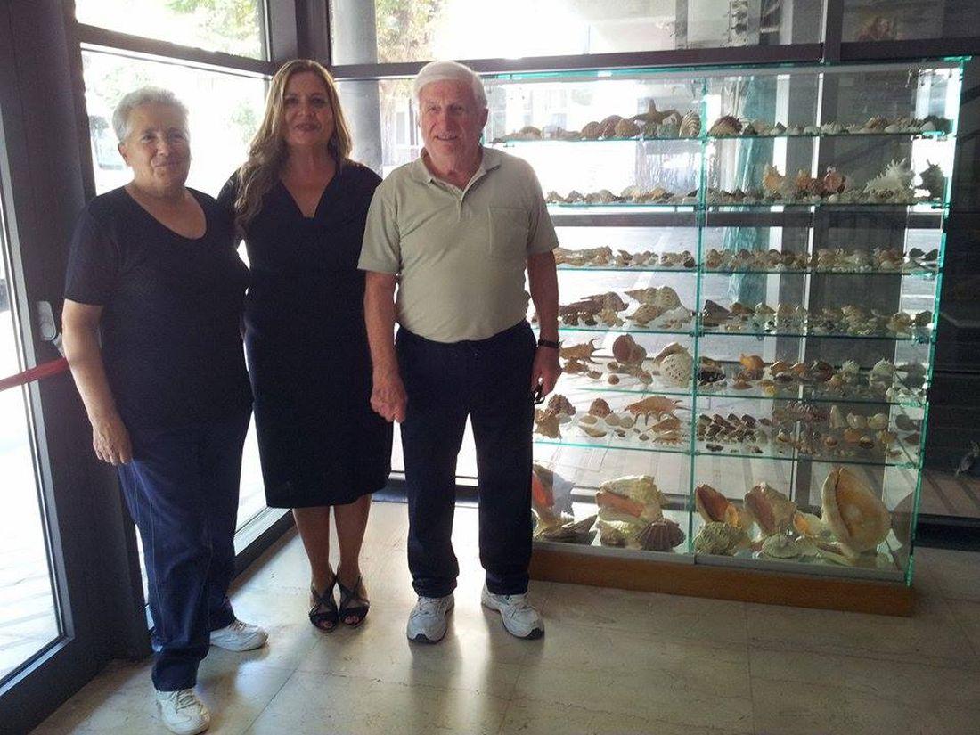 Splendida collezione di conchiglie donata al Comune di Porto Sant'Elpidio
