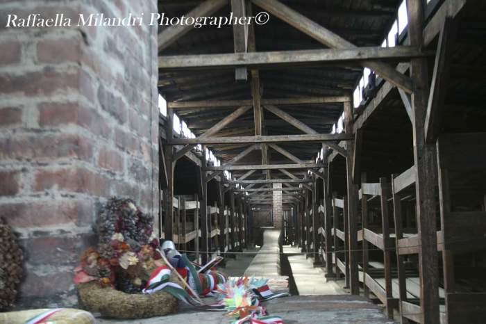 Auschwitz II Birkenau . Campo di Concentramento.