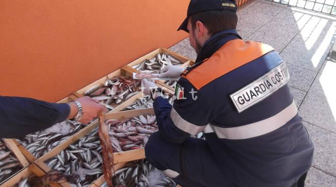 Attività di contrasto al commercio abusivo di prodotto ittico