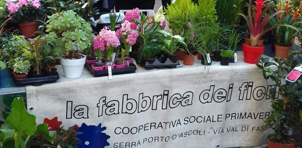 Consegnati i Diplomi ai partecipanti al progetto Laboratorio di florovivaismo