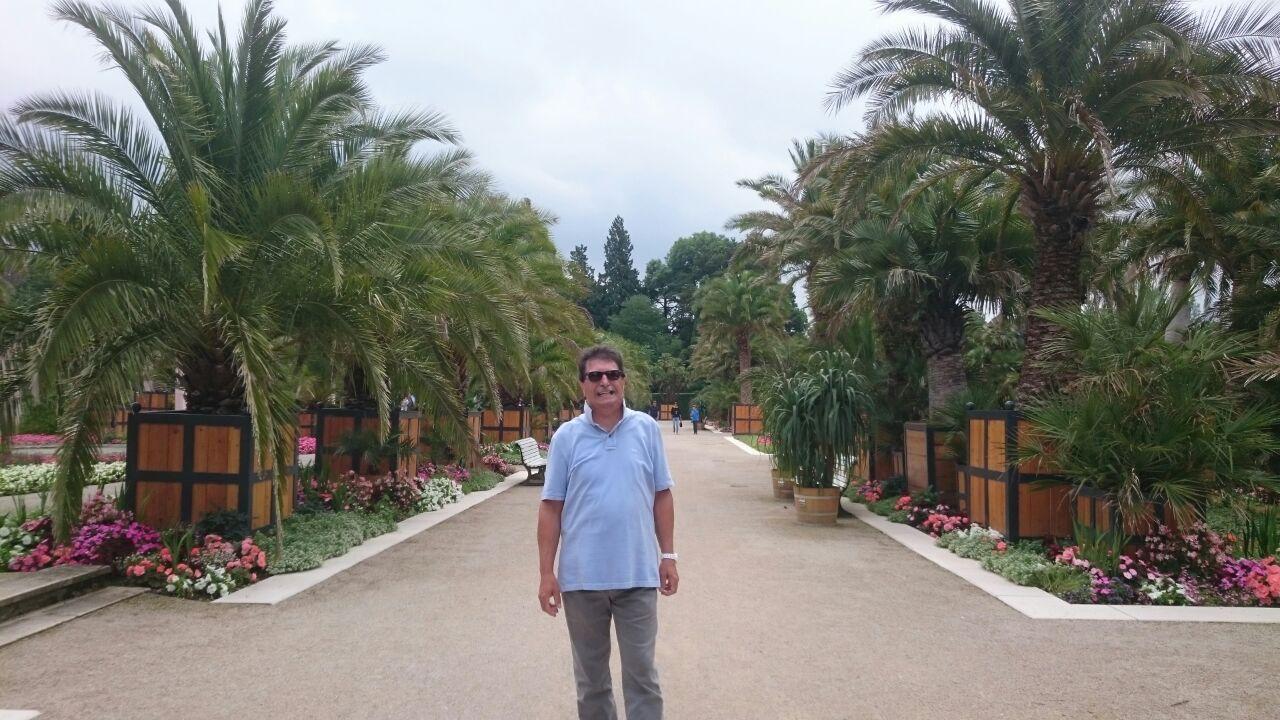 Riviera delle palme?
