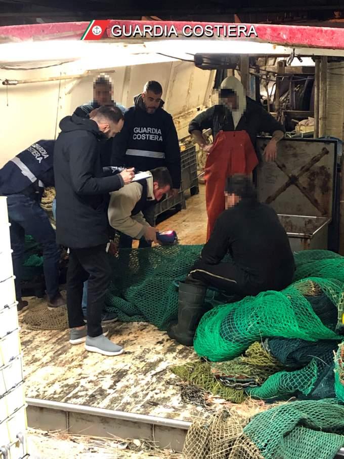 Guardia Costiera, controlli sulla filiera della pesca. Sanzioni e sequestri