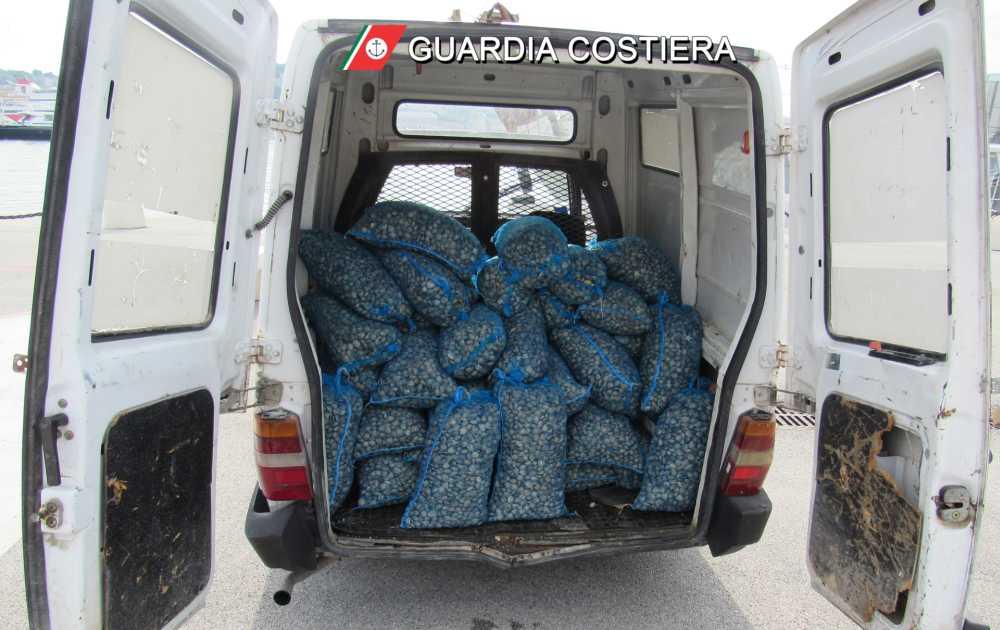 Guardia Costiera: pesca di frodo, sequestrati 740 Kg di vongole