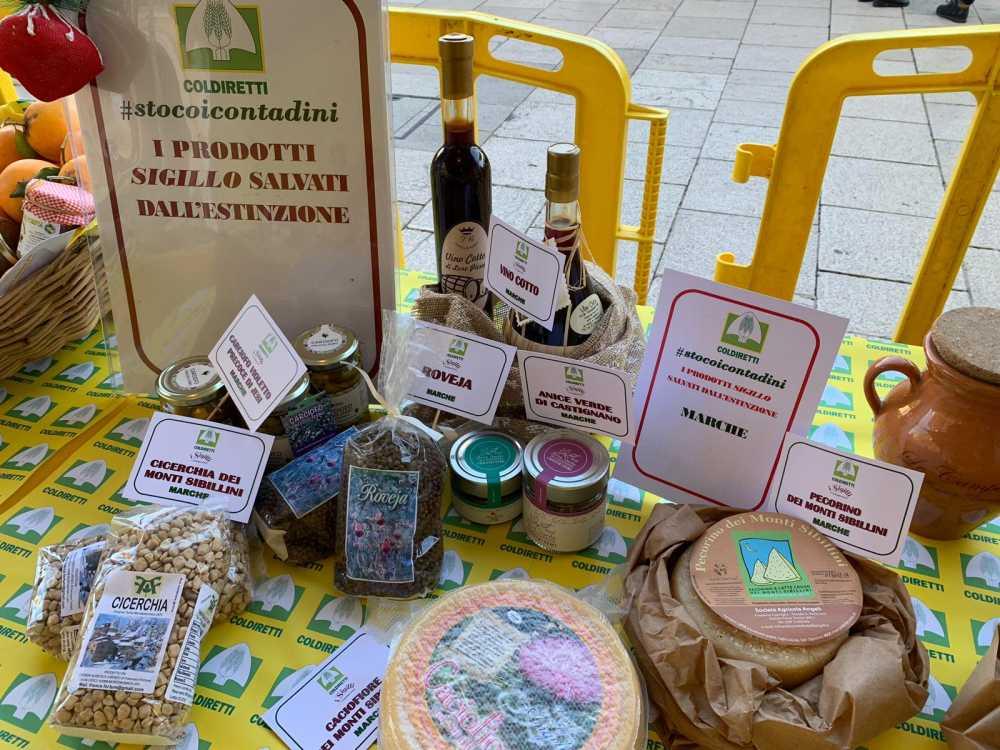 Coldiretti Marche, la presidente degli agriturismi a Matera per promuovere il turismo green e agroalimentare marchigiano