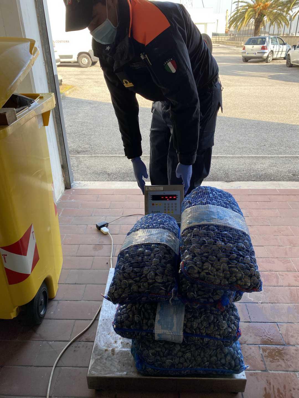Sequestrate vongole da Polizia Stradale e Guardia Costiera