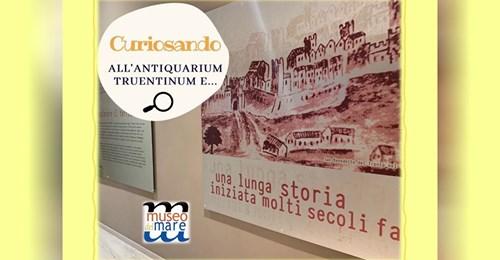 Curiosando all'Antiquarium Truentinum e…
