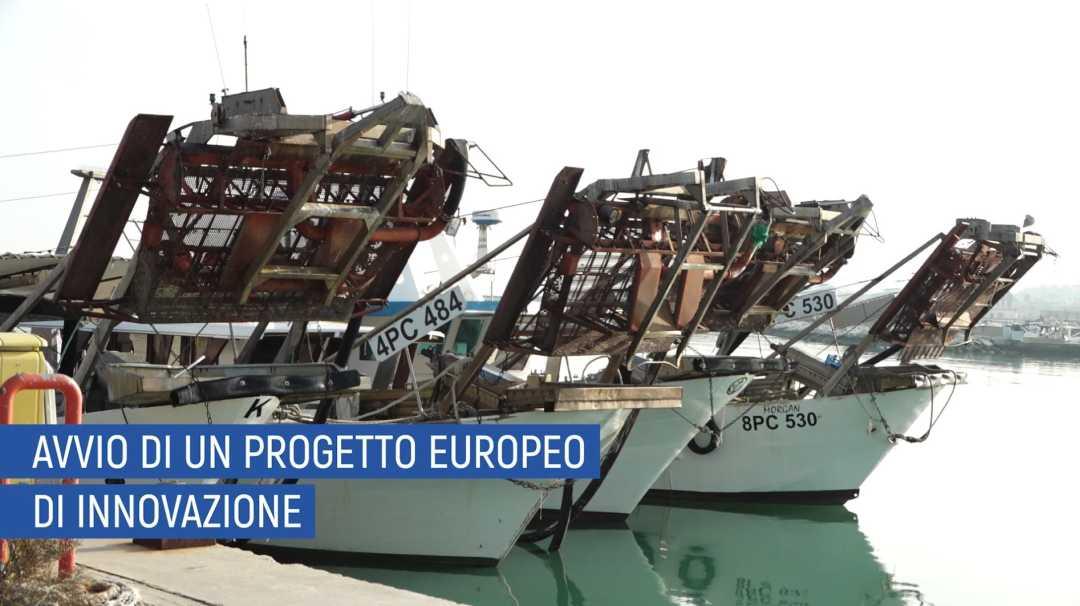 """Partners in Service Cea Ambiente Mare riconosciuto dal Ministero  Istituto Scientifico """"Pesca e Ricerca Innovativa"""""""