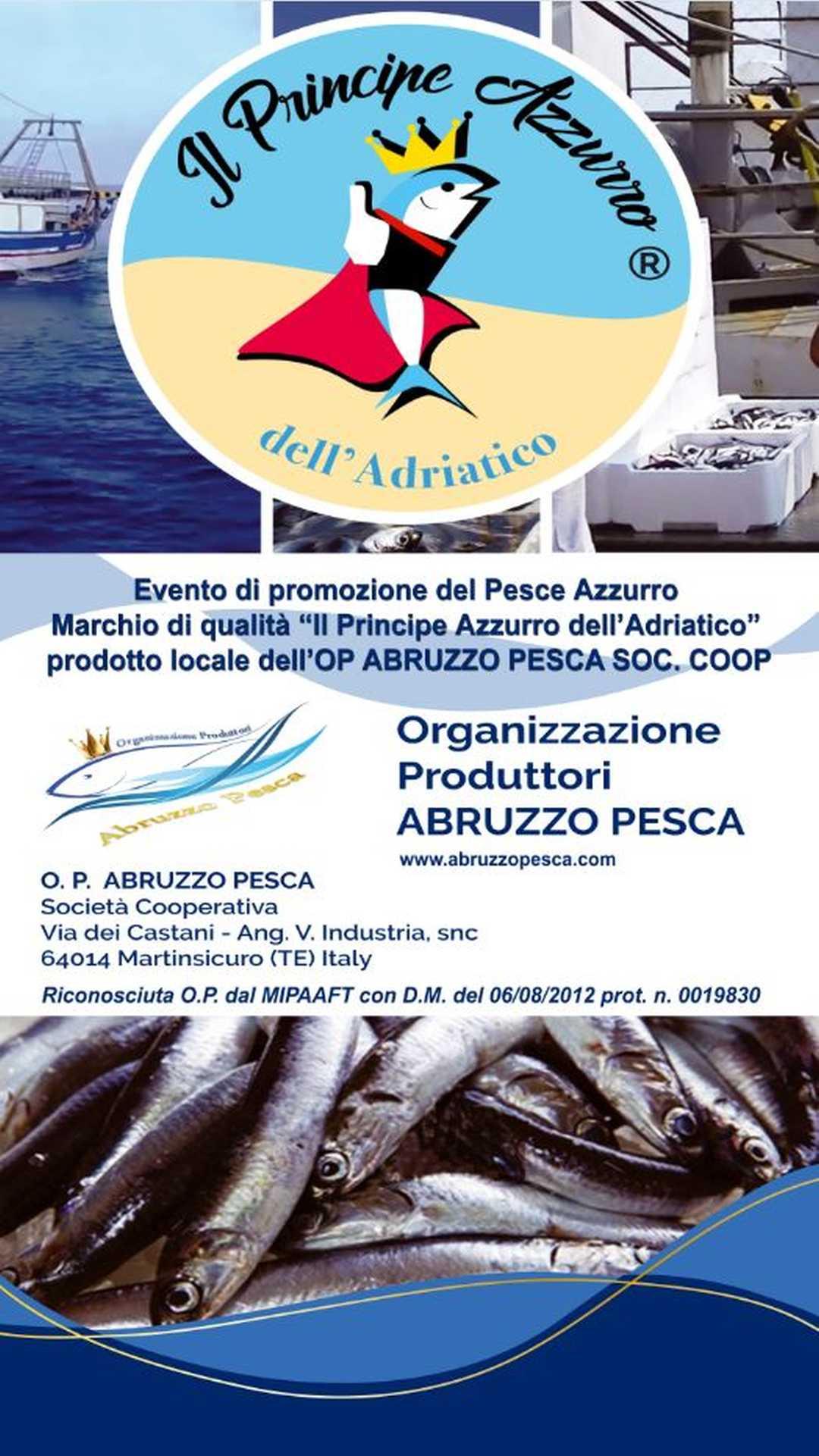 """Al via la Campagna Educativa e Promozionale""""Il Principe Azzurro dell'Adriatico"""""""